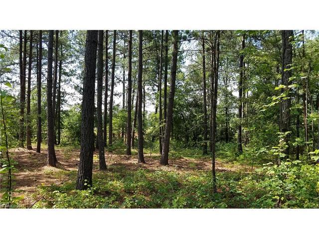 000 County Line Road, Rutherfordton, NC 28139 (#3304268) :: Caulder Realty and Land Co.