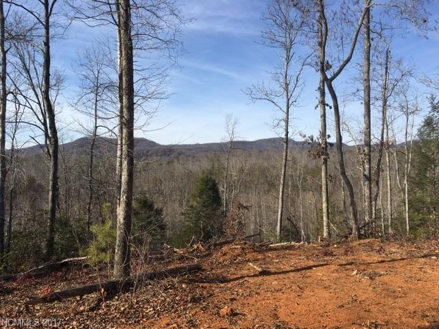 3991 Bills Creek Road, Lake Lure, NC 28746 (#3304459) :: Caulder Realty and Land Co.