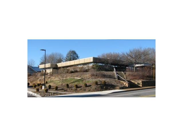 1425. Patton Avenue, Asheville, NC 28806 (#3304615) :: Exit Mountain Realty