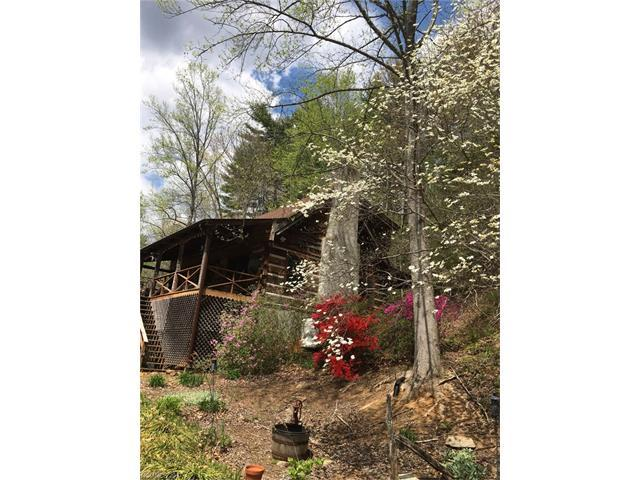 25 Frontier Court, Asheville, NC 28805 (#3305542) :: Rowena Patton's All-Star Powerhouse @ Keller Williams Professionals