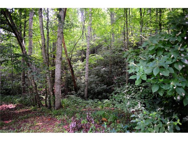 99999 Holland Drive Lot 25, Black Mountain, NC 28711 (#3305547) :: Caulder Realty and Land Co.