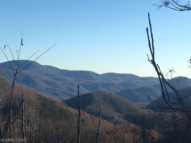 671 Mountain Cove Road, Hendersonville, NC 28792 (#3305565) :: Caulder Realty and Land Co.