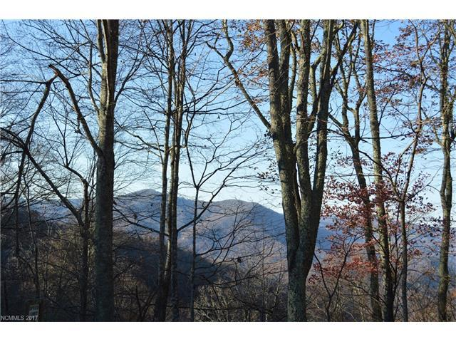 Lot 5B Awohali Trail 5B, Maggie Valley, NC 28751 (#3307443) :: Rowena Patton's All-Star Powerhouse @ Keller Williams Professionals