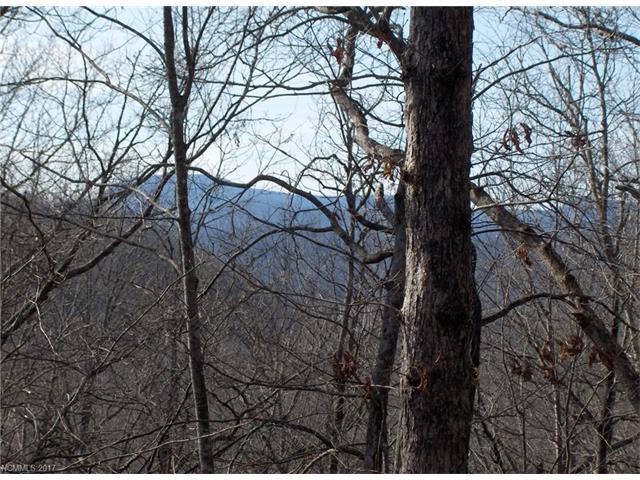 0 Unvquolad Court U29l76, Brevard, NC 28712 (#3310149) :: Exit Mountain Realty