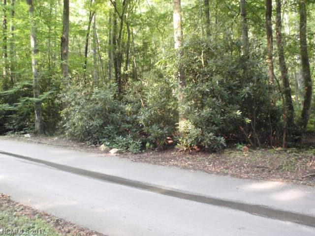 0 Laurel Branch #0, Sylva, NC 28779 (#3310229) :: Exit Realty Vistas