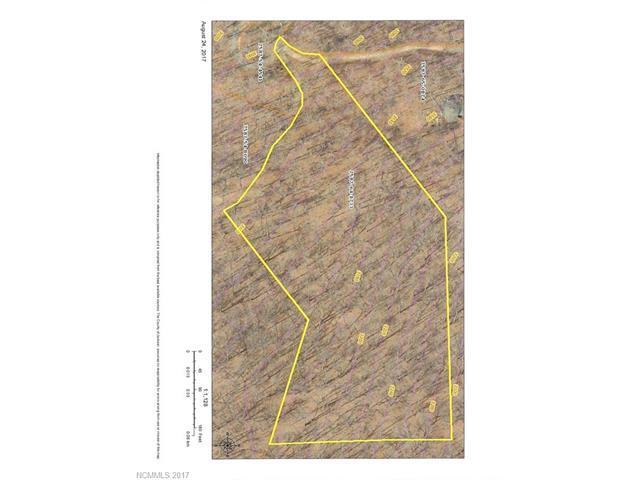 8 Stone Pillow Road, Tuckasegee, NC 28723 (#3312394) :: Exit Realty Vistas