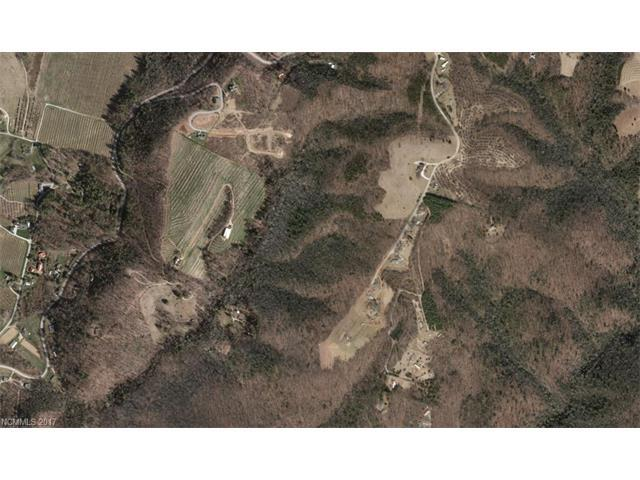 9999 John Delk Road, Hendersonville, NC 28792 (#3312532) :: Exit Realty Vistas