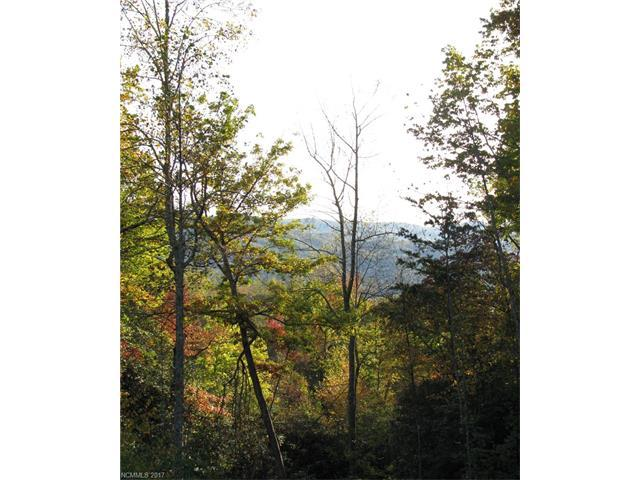 162 Mountain Crest Drive #32, Hendersonville, NC 28739 (#3316155) :: Caulder Realty and Land Co.