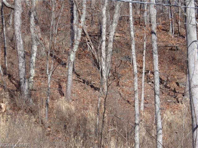 9999 Metcalf Creek Loop, Mars Hill, NC 28754 (#3318112) :: Team Browne - Keller Williams Professionals Realty