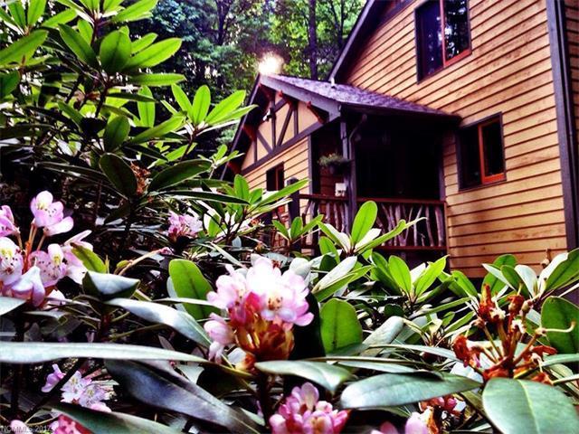 11 Moxie Trail, Black Mountain, NC 28711 (#3321004) :: Team Browne - Keller Williams Professionals Realty