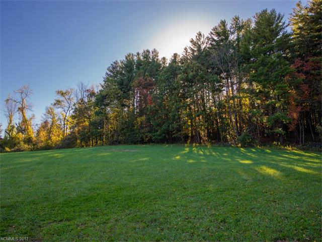 Lot 3 Cane Creek Road #3, Fletcher, NC 28732 (#3322063) :: Exit Realty Vistas