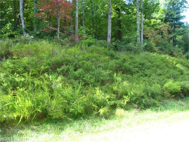 318 Rolling Ridge Trail #318, Lake Lure, NC 28746 (#3322072) :: Caulder Realty and Land Co.