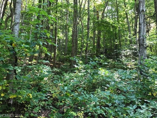 00 Tanglewood Trail #416, Waynesville, NC 28786 (#3322361) :: Caulder Realty and Land Co.