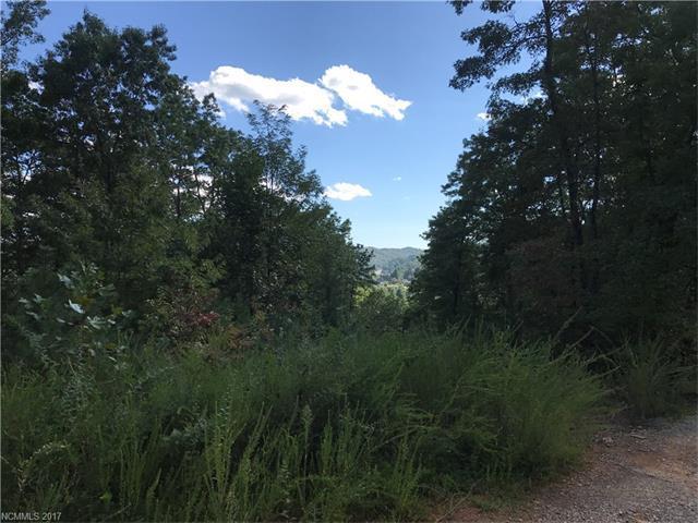 TDB Mcguire Road, Pisgah Forest, NC 28768 (#3322424) :: Exit Realty Vistas