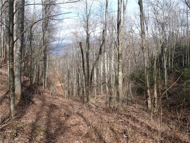 0000 Tessie Lane #20, Black Mountain, NC 28711 (#3322840) :: Puffer Properties