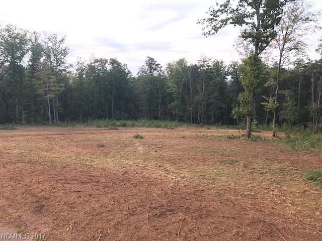 249 Royal Way, Rutherfordton, NC 28139 (#3323011) :: Caulder Realty and Land Co.