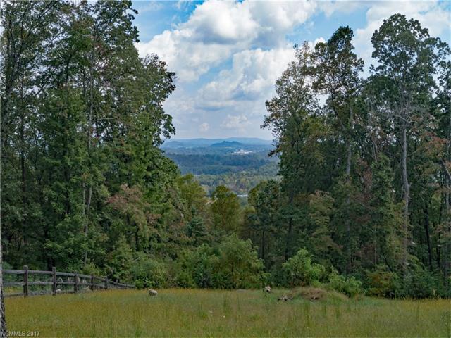 40 Quartz Trail #3, Hendersonville, NC 28791 (#3323072) :: Caulder Realty and Land Co.