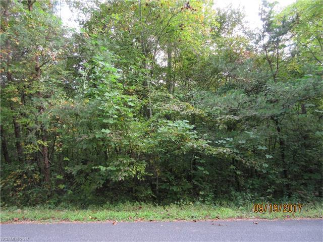 Lot 31 Jonathan Lane, Lake Lure, NC 28746 (#3323227) :: Puffer Properties