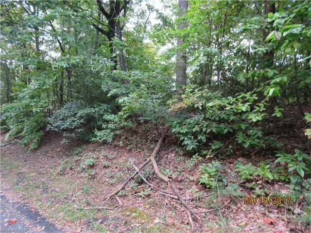 Lot 46 O Brien Road, Lake Lure, NC 28746 (#3323238) :: Puffer Properties