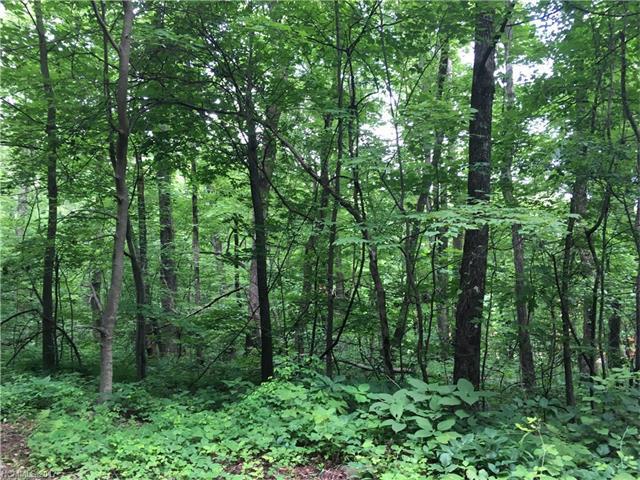 4 Davey Crockett Road #4, Fairview, NC 28730 (#3323733) :: Exit Realty Vistas