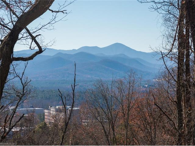 38 Samuel Ashe Drive #55, Asheville, NC 28805 (#3325875) :: Exit Mountain Realty