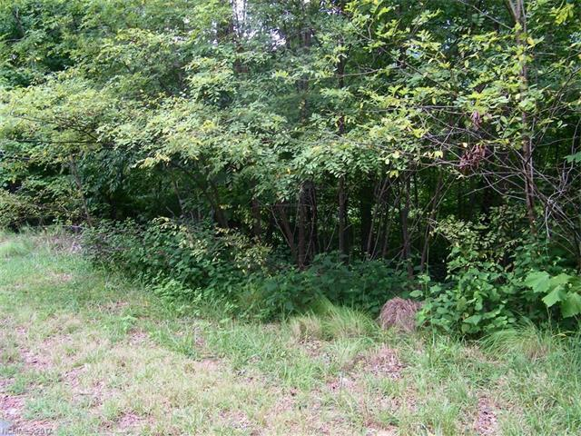 LOT 41 Hawks Nest Trail, Lake Lure, NC 28746 (#3327706) :: Caulder Realty and Land Co.