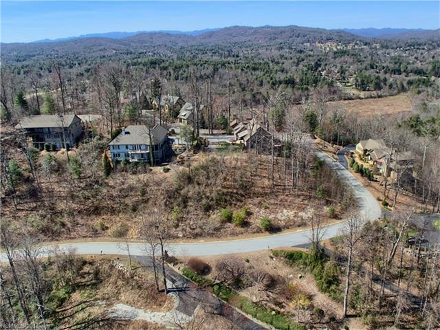 263 High Road Overlook #86, Flat Rock, NC 28739 (#3328877) :: Puffer Properties