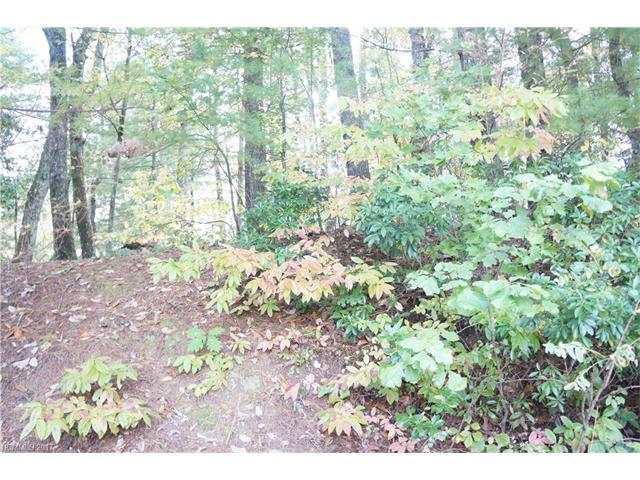 607 Overlook Drive, Flat Rock, NC 28731 (#3329115) :: Caulder Realty and Land Co.