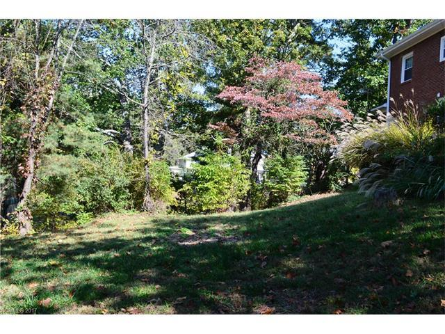 21 White Fawn Drive 1A, Asheville, NC 28801 (#3329345) :: Exit Realty Vistas
