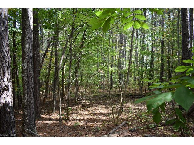 0 Spring Hollow Road Lo9, Lake Lure, NC 28746 (#3329365) :: Caulder Realty and Land Co.