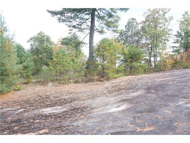 611 Overlook Drive, Flat Rock, NC 28731 (#3329483) :: Caulder Realty and Land Co.