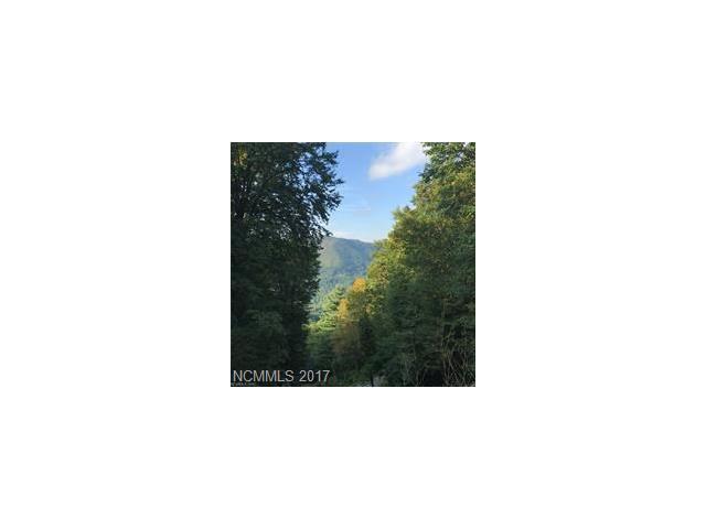 0 Trickle Creek Road #25, Waynesville, NC 28768 (#3329983) :: Rowena Patton's All-Star Powerhouse @ Keller Williams Professionals