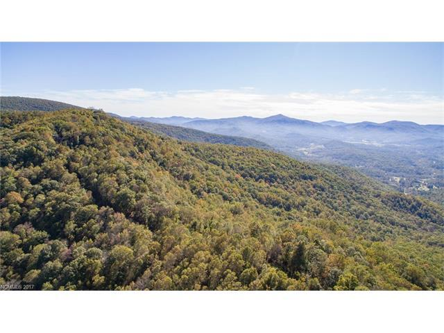tbd Caperton Point Road #14, Swannanoa, NC 28778 (#3330146) :: Exit Realty Vistas