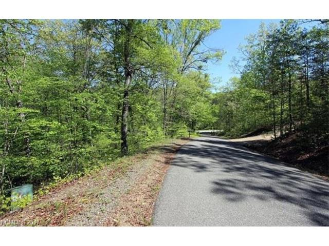 0 Stayman Court #3, Lake Lure, NC 28746 (#3330176) :: Caulder Realty and Land Co.
