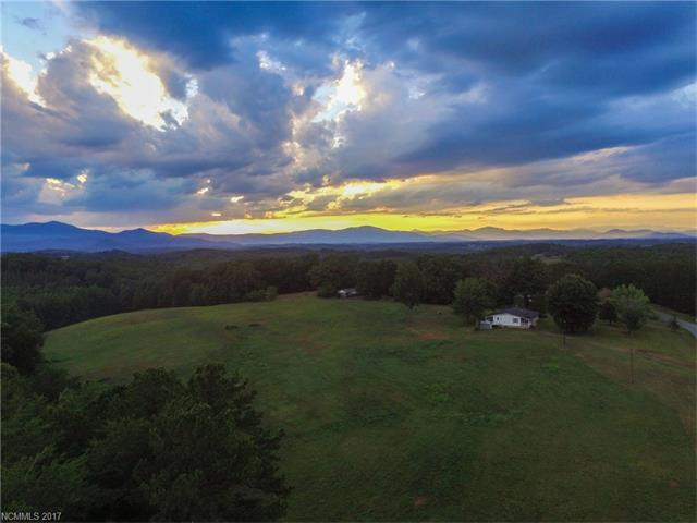 1029 Turner Road, Tryon, NC 28782 (#3330614) :: Caulder Realty and Land Co.