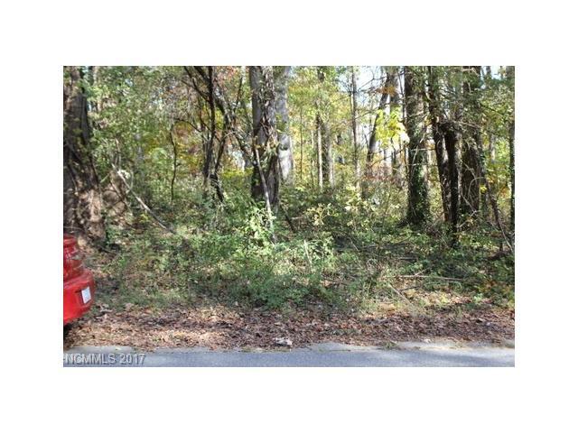 2324 Greater Druid Hills Boulevard, Hendersonville, NC 28791 (#3331640) :: Keller Williams Biltmore Village