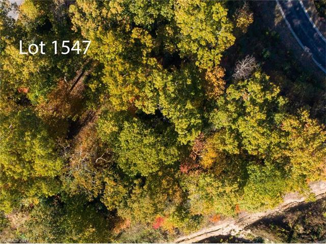 50 High Fields Court W #1547, Hendersonville, NC 28791 (#3333631) :: Caulder Realty and Land Co.