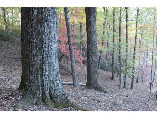 9999 Shining Rock Path 10R, Mills River, NC 28759 (#3333827) :: RE/MAX Four Seasons Realty