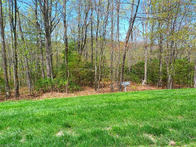 62 Old Hickory Trail #158, Hendersonville, NC 28739 (#3334465) :: Caulder Realty and Land Co.