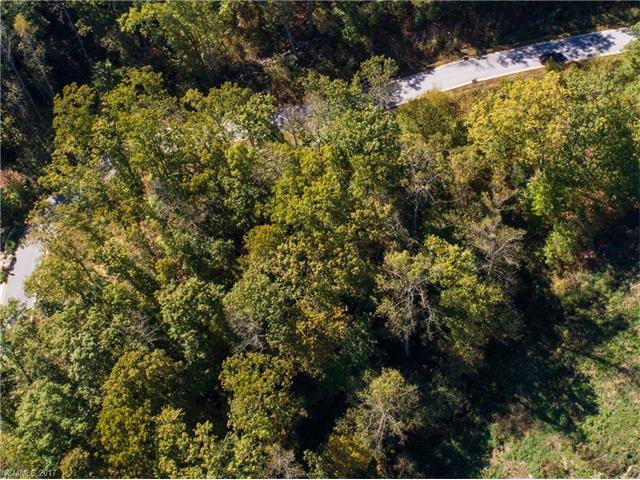 0 Carriage Crest Drive #1546, Hendersonville, NC 28792 (#3334839) :: Caulder Realty and Land Co.