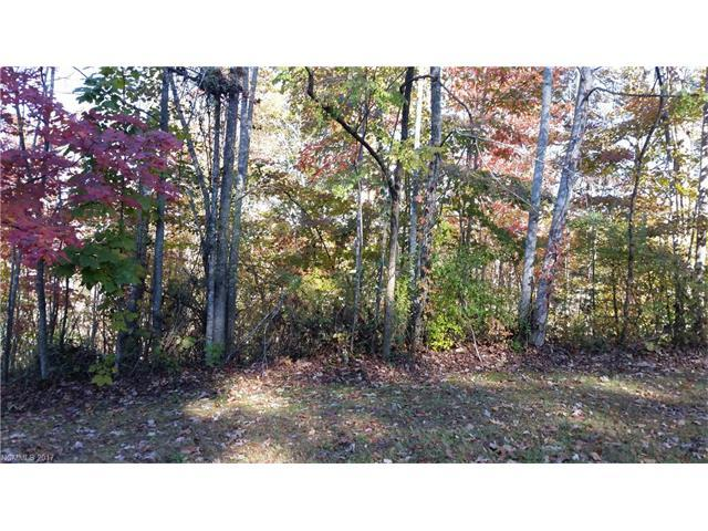 1420 Mountain Meadow Drive #6, Hendersonville, NC 28739 (#3335554) :: Caulder Realty and Land Co.