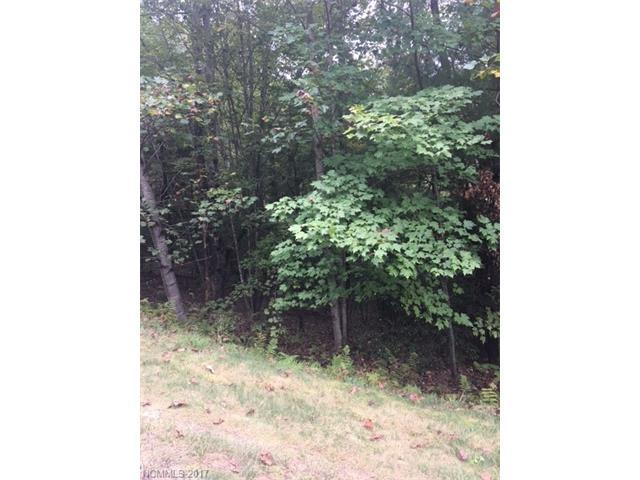 211 Tom Fazio Trace #342, Hendersonville, NC 28739 (#3336219) :: Caulder Realty and Land Co.