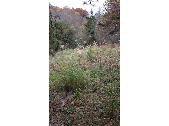 TBD Glen Eagle Lane #169, Mills River, NC 28759 (#3336346) :: RE/MAX Four Seasons Realty