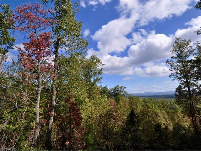 1907 Tree View Trail Lot 154, Arden, NC 28704 (#3337235) :: Exit Mountain Realty