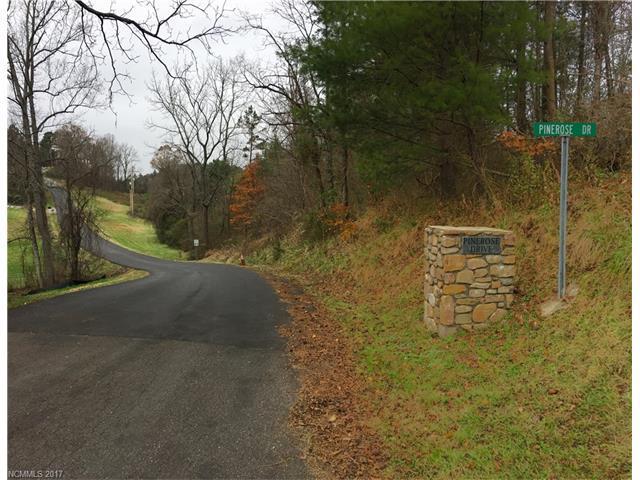99999 Pinerose Drive #15, Weaverville, NC 28787 (#3338020) :: Exit Realty Vistas
