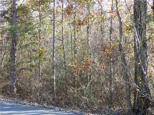 0 Pineview Drive #25, Rutherfordton, NC 28139 (#3338025) :: Caulder Realty and Land Co.
