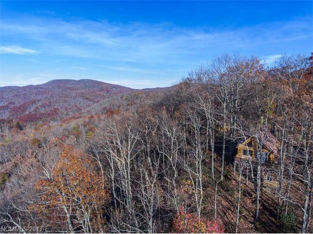 19 Kate Mountain Road, Black Mountain, NC 28711 (#3338570) :: Keller Williams Biltmore Village