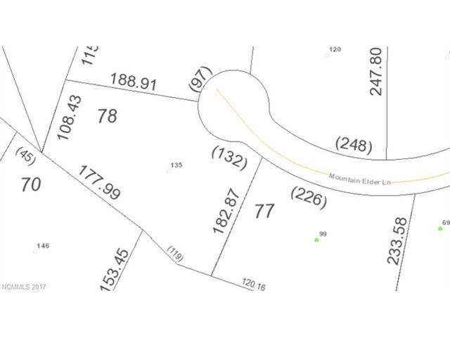 135 Mountain Elder Lane #78, Hendersonville, NC 28739 (#3338669) :: RE/MAX Four Seasons Realty