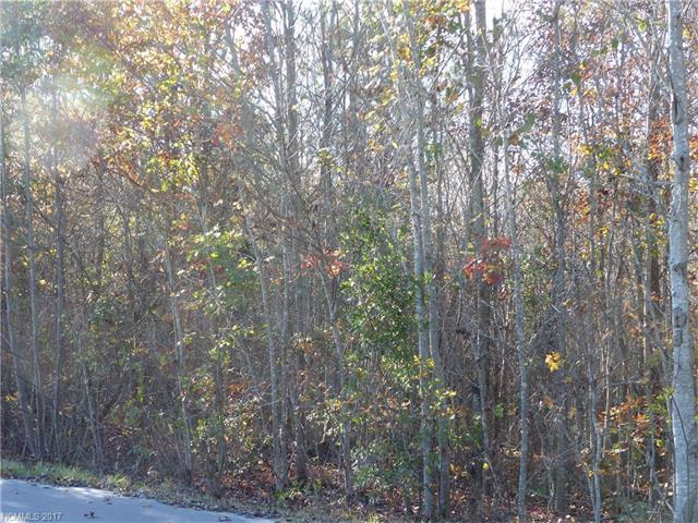 0 Dimsdale Drive #28, Rutherfordton, NC 28139 (#3338787) :: Caulder Realty and Land Co.