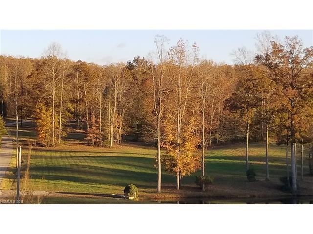 5048 Peniel Road, Tryon, NC 28782 (#3338893) :: Caulder Realty and Land Co.
